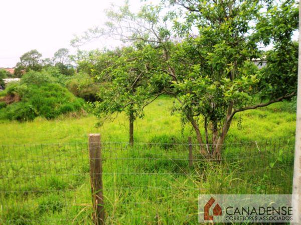 Canadense Corretores Associados - Terreno, Hípica - Foto 2