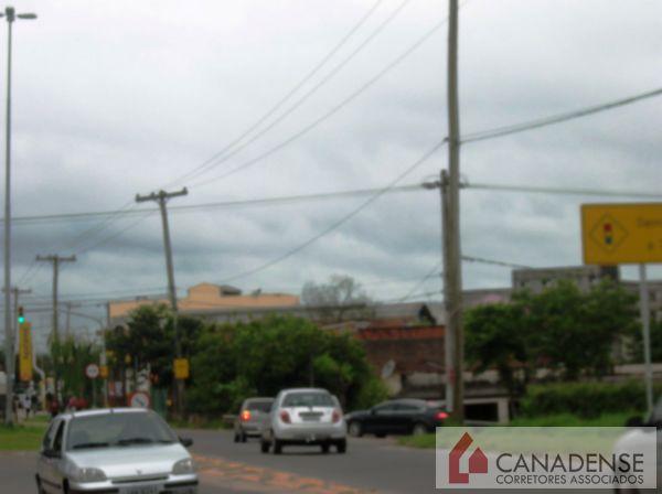 Canadense Corretores Associados - Terreno, Hípica - Foto 4