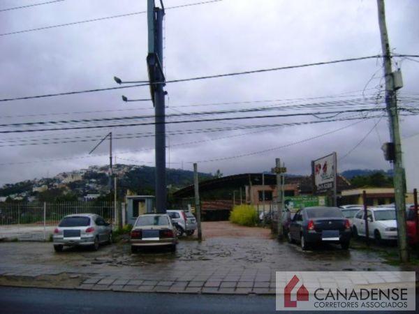 Terreno, Cavalhada, Porto Alegre (6686) - Foto 2