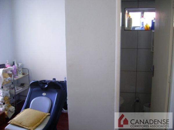 Casa 3 Dorm, Cavalhada, Porto Alegre (6909) - Foto 3