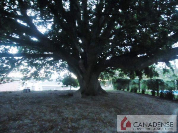 Canadense Corretores Associados - Casa 4 Dorm - Foto 26