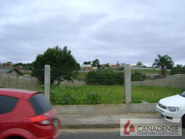 Terreno, Passo das Pedras, Porto Alegre (7639) - Foto 3