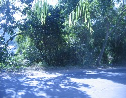 áreas e Sítio Vila Nova Porto Alegre
